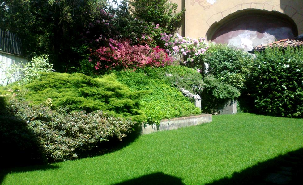 Area Verde prato semina