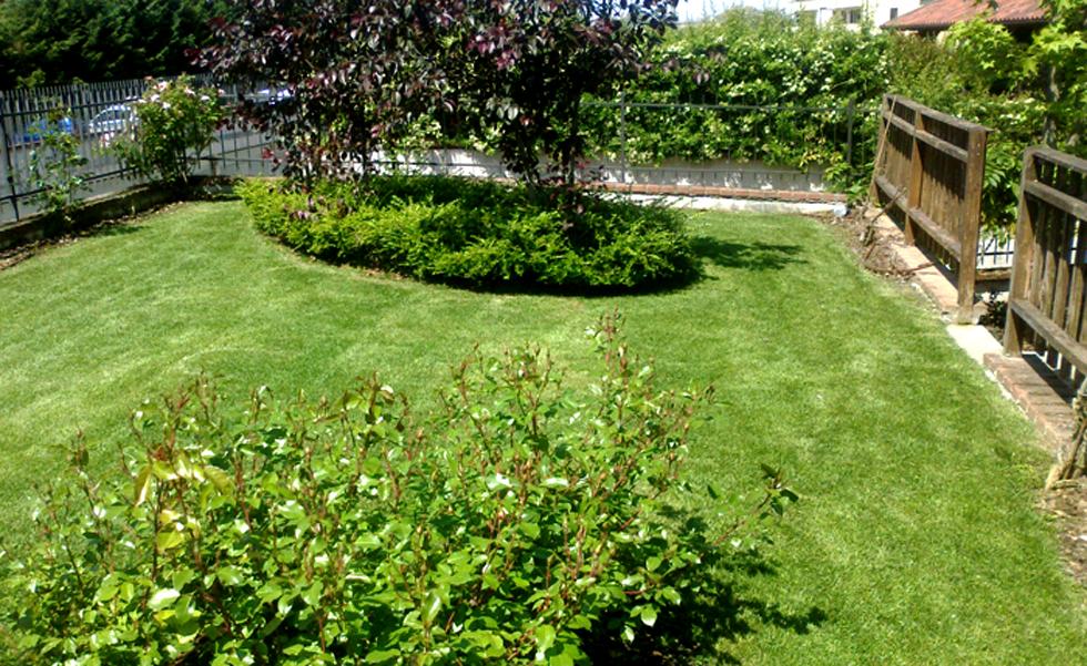 Area Verde manutenzioni giardini e piante