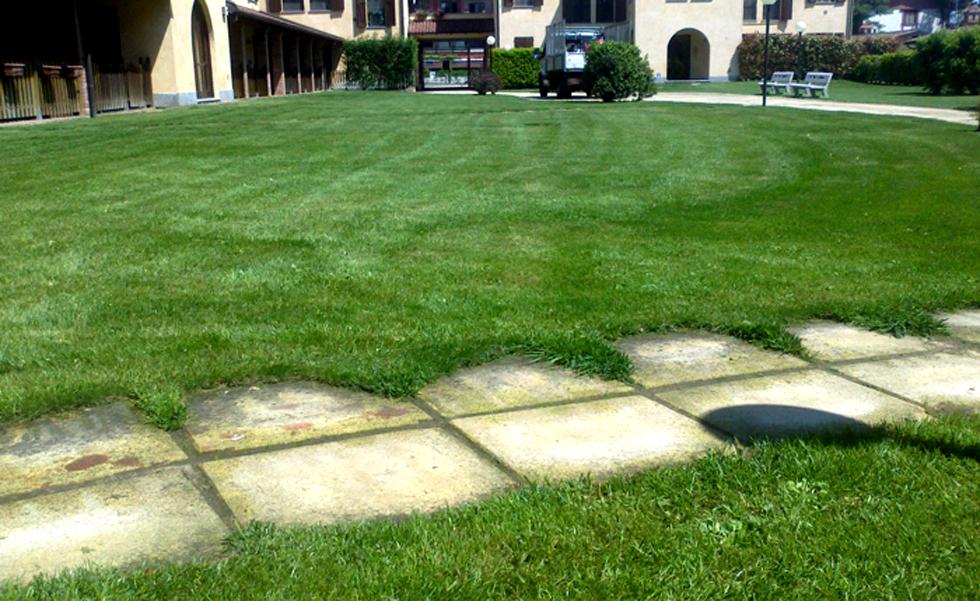 Area Verde manutenzione aree verdi