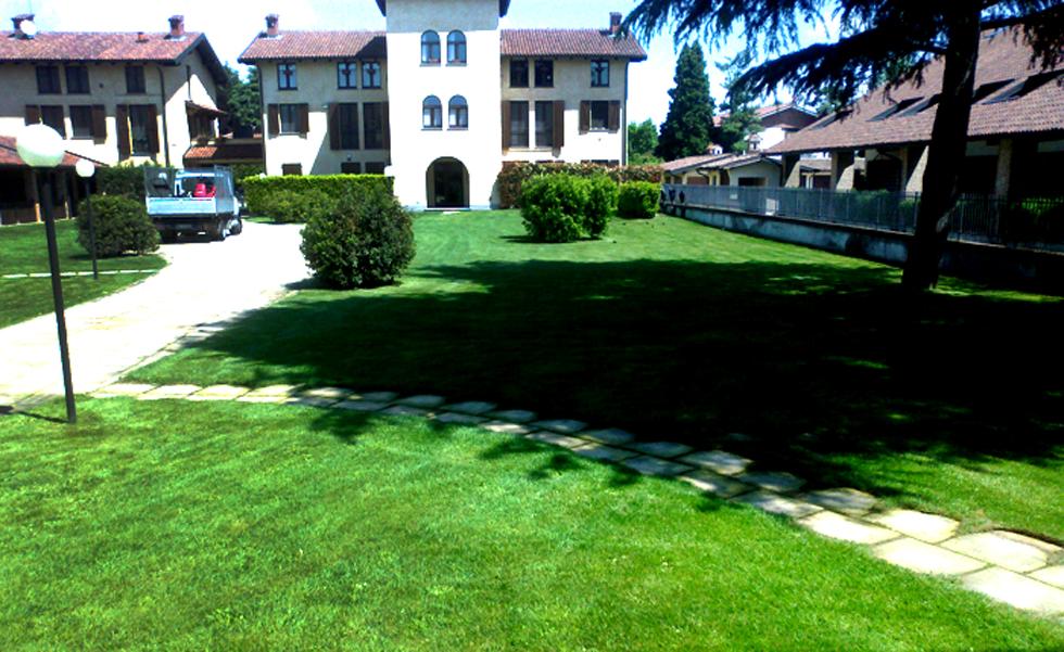 Area Verde manutenzione cortili e cespugli