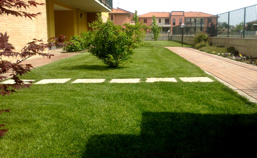 Area Verde prato seminato