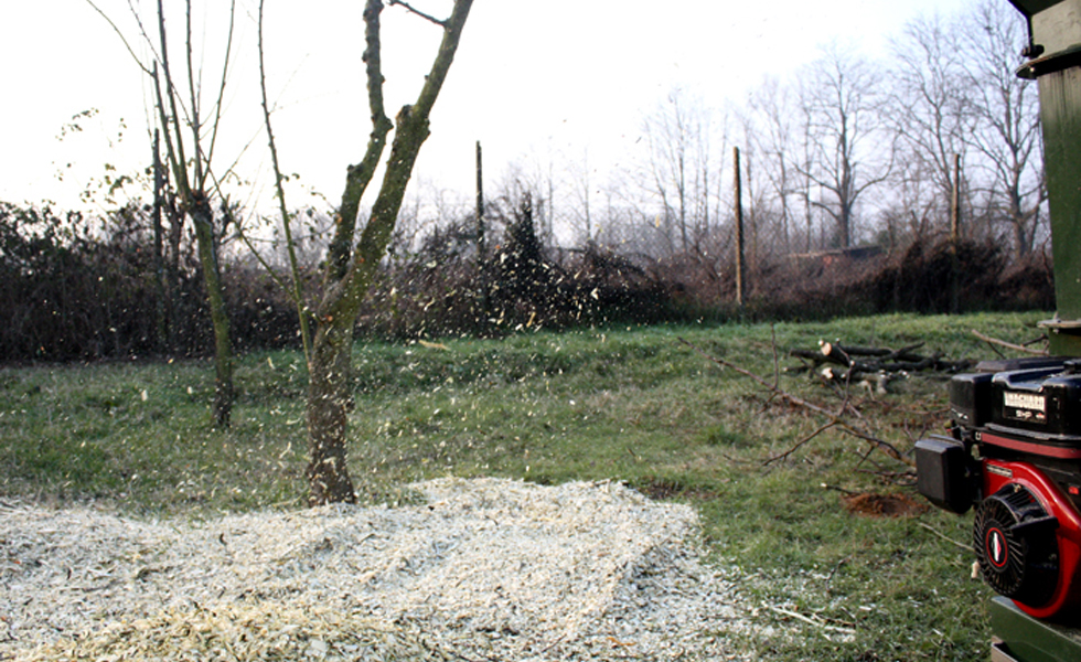 Area Verde trituratura ramaglie